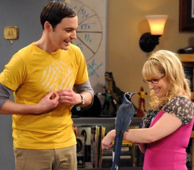 jim_parsons_as_sheldon_cooper_and_melissa_rauch_as_bernadette_rostenkowski