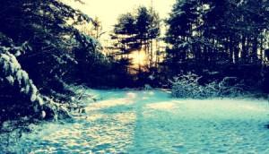 WinterJenHorn