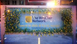 TheWeatherNetwork