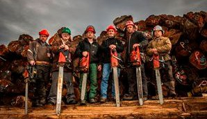 TimberKings