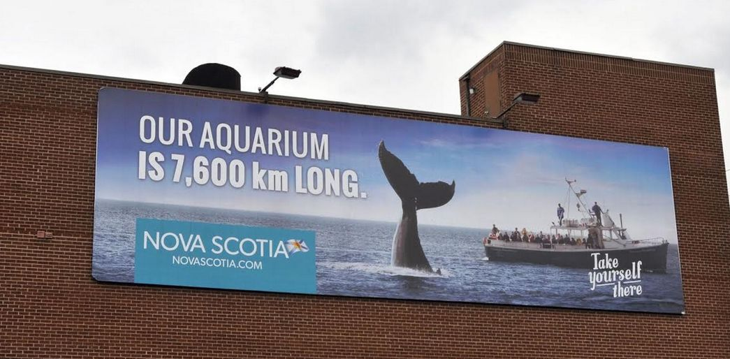 Big year predicted for Nova Scotia's tourism industry | The ...