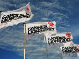 Copied from strategy - CAnnes lion flags
