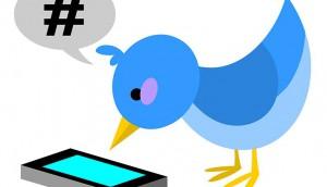 Twitter, scrren, bird