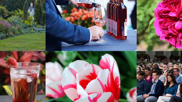 TL_GardenParty_2160x1080_Eventbrite_Header_REV4-803x603-1496682434