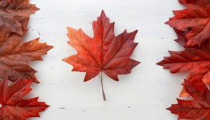 Copied from Playback - shutterstock_maple leaf canada
