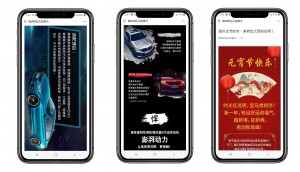 BMW WeChat