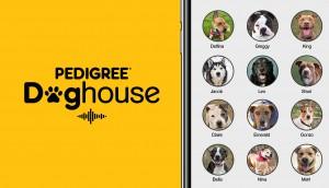 pr_doghouse55